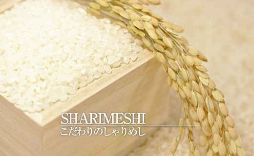 sharimeshi_icacth